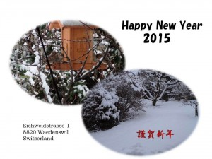 A Happy New Year from Professor Hasegawa